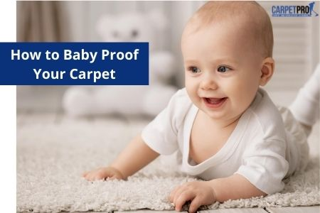 Baby proof your Carpet